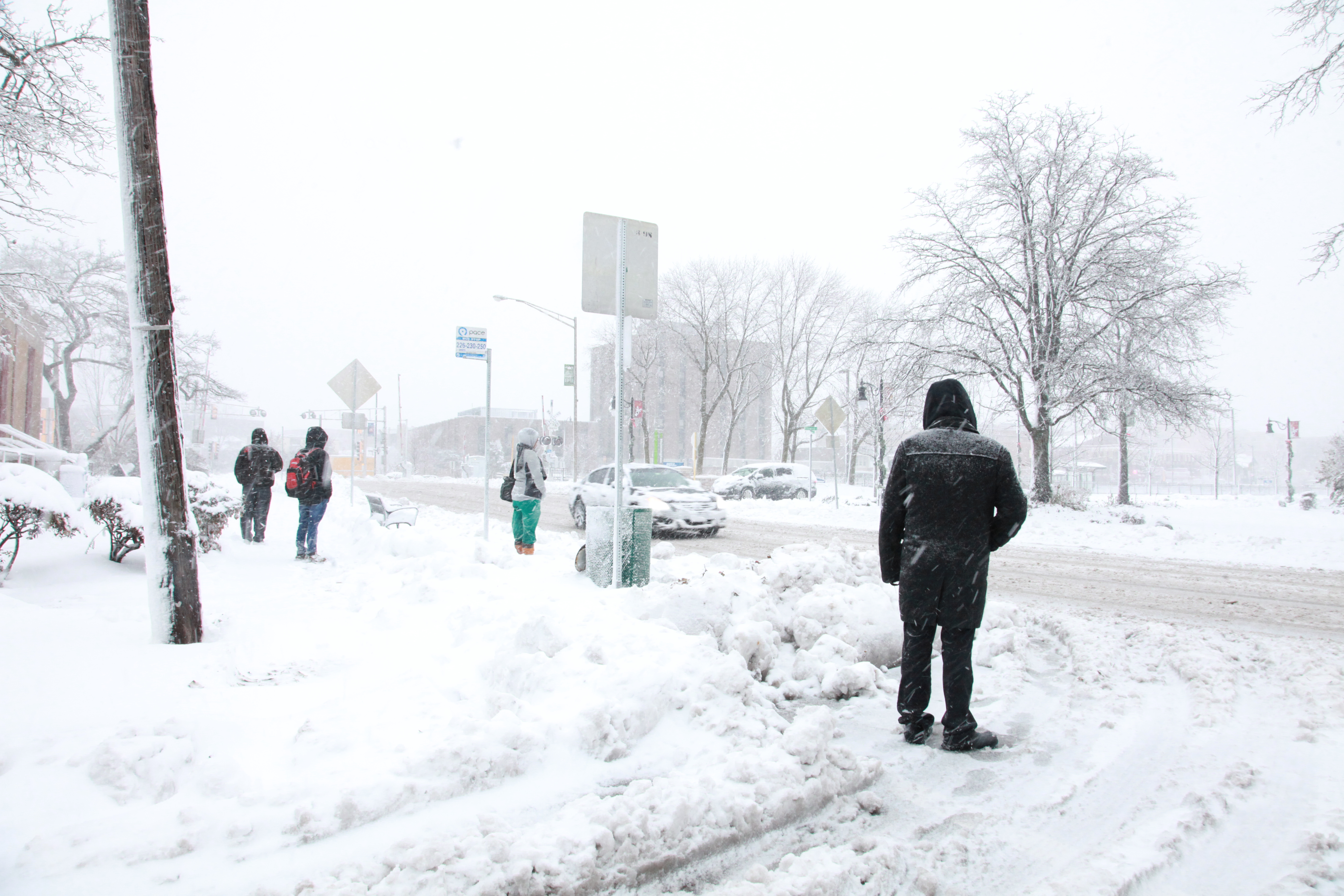 Blizzard Dumps Nearly 8 Inches On Area | Journal & Topics Media Group
