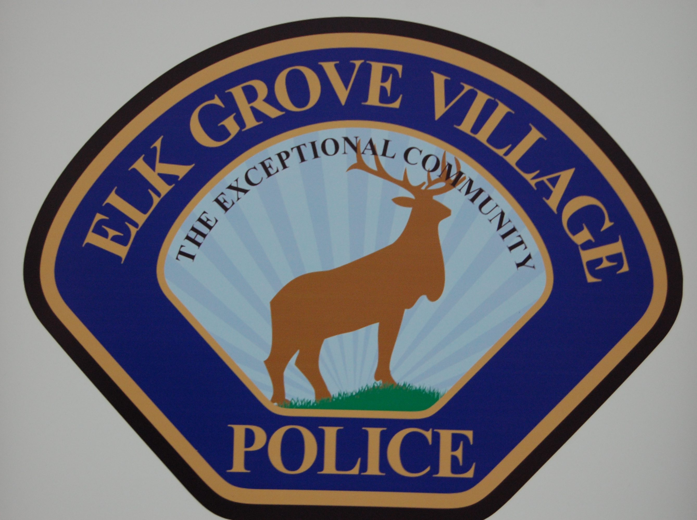 Elk Grove Blotter: DUI, Failure To Reduce Speed Charged In 2